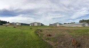 Picture of 1257 Peats Ridge Road, Peats Ridge NSW 2250