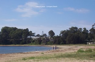 Picture of 41 Albatross Road, Catalina NSW 2536