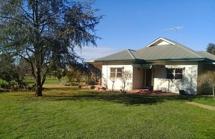 Picture of 50 Yankee Crossing Road, Henty NSW 2658