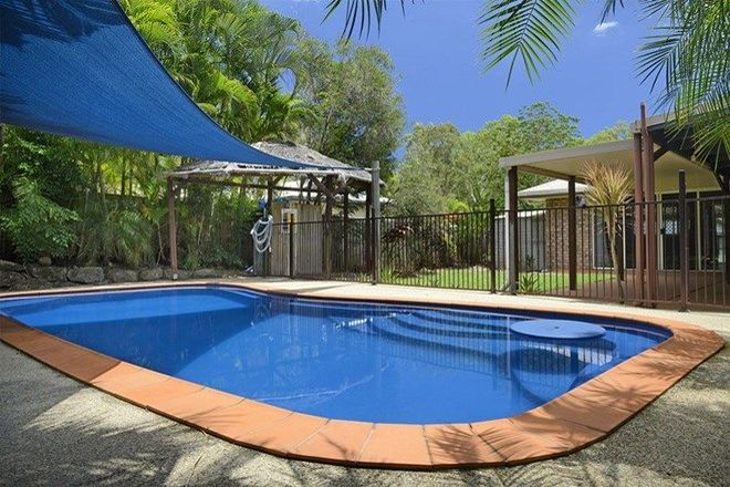 Picture of 17 Wahoo Court, JUBILEE POCKET QLD 4802