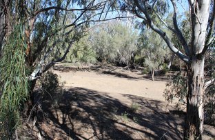 Picture of 86 Genanagie St, Narrabri NSW 2390