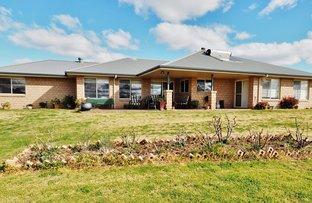 5641 Cobbadah Road, Bingara NSW 2404