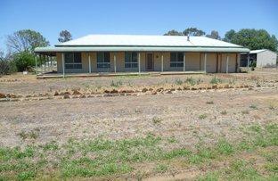 Picture of 20 - 24 David, Binnaway NSW 2395