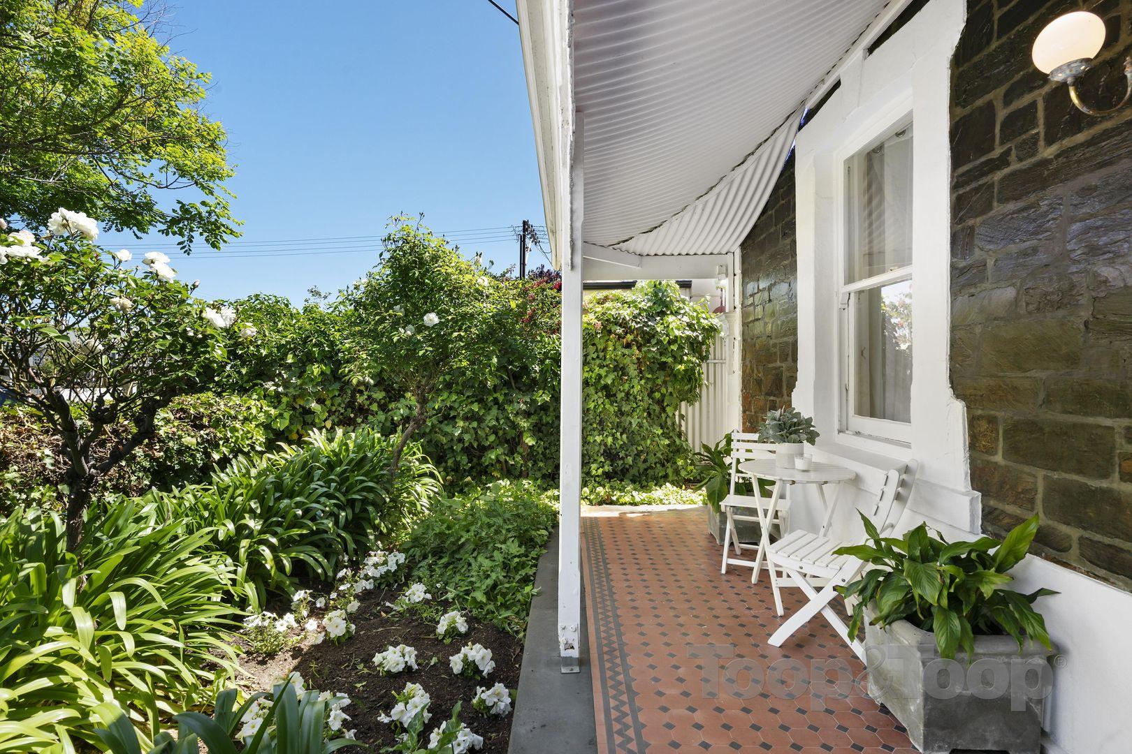 318 Halifax Street, Adelaide SA 5000, Image 1
