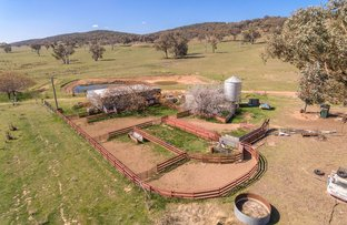 Picture of 989 Sandy Creek Road, Molong NSW 2866