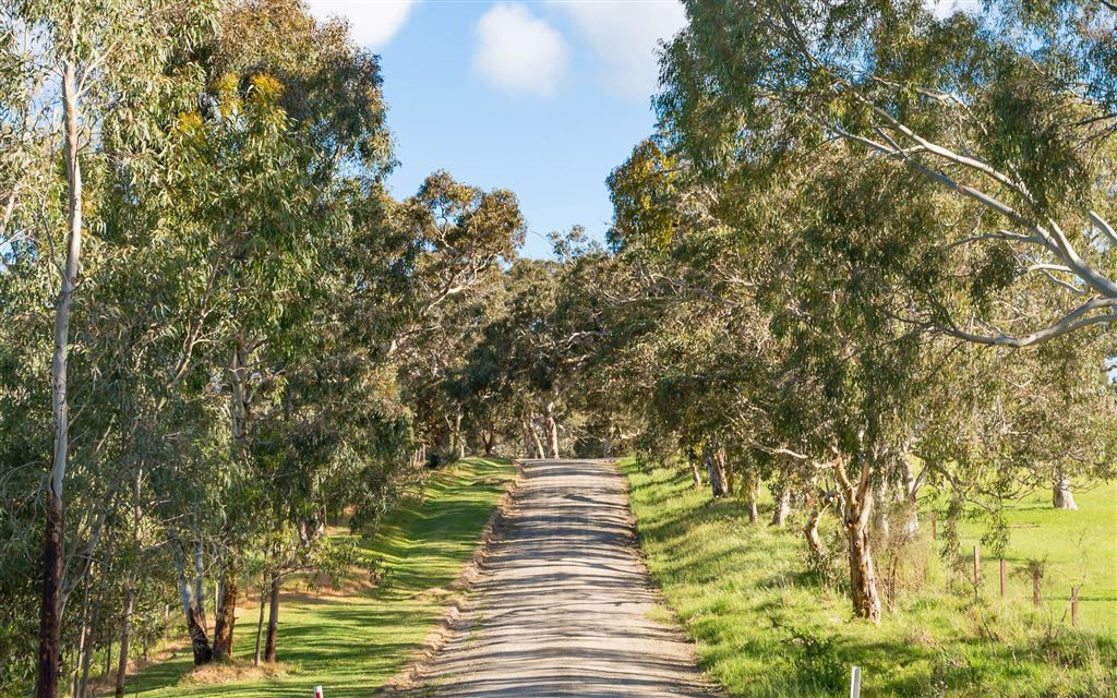 Lot 52 Parsons Road, Inman Valley SA 5211, Image 2
