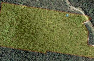 Lot 52 Glens Creek Road, Nymboida NSW 2460