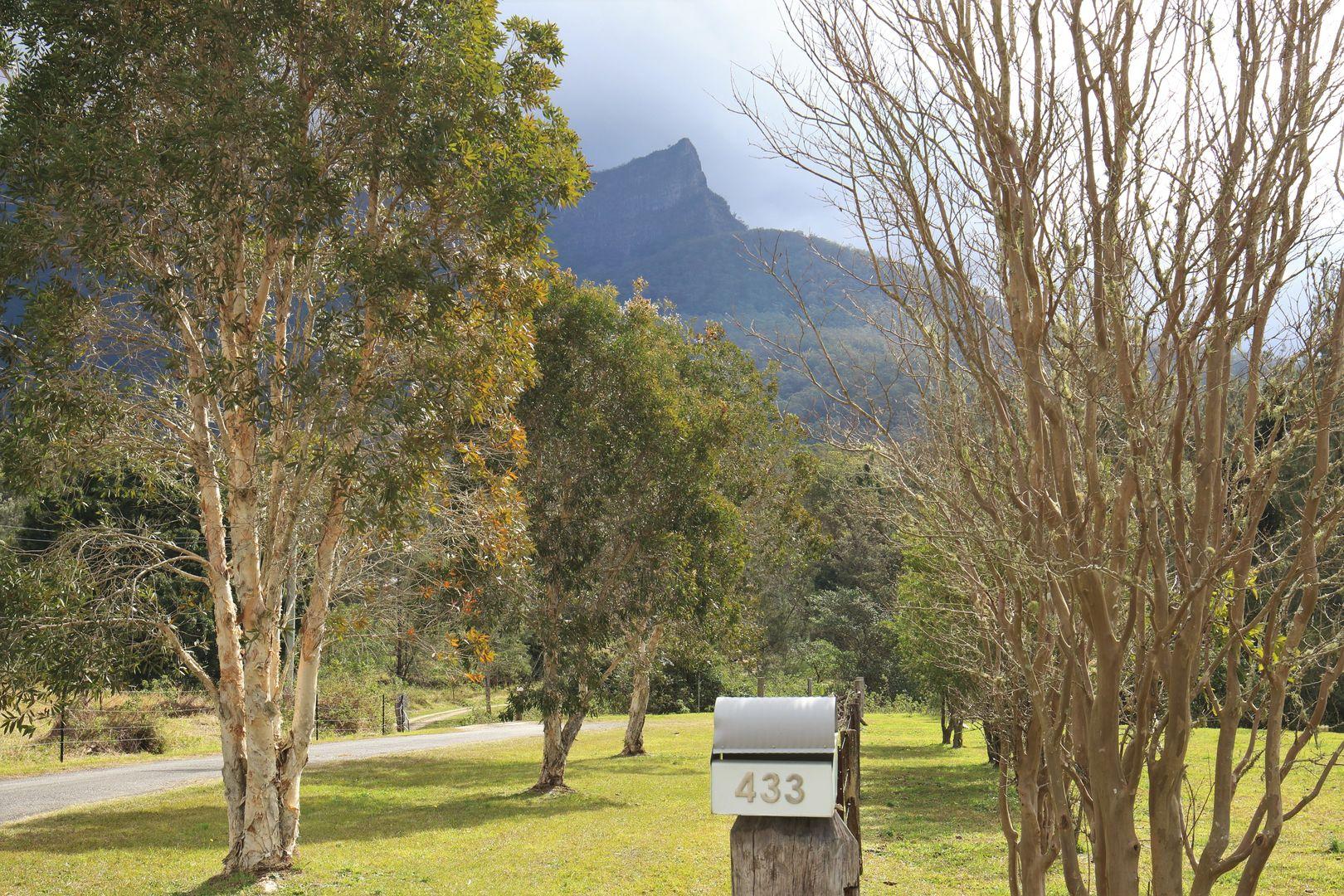 433 Back Creek Road, Tyalgum, Back Creek NSW 2484, Image 2