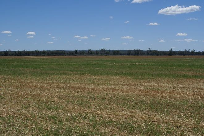 Picture of INGLEWOOD QLD 4387