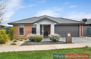 Picture of 16 Sutcliffe Street, Lucas VIC 3350