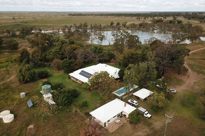 Picture of THURN 796 Warrabah Road, COONAMBLE NSW 2829