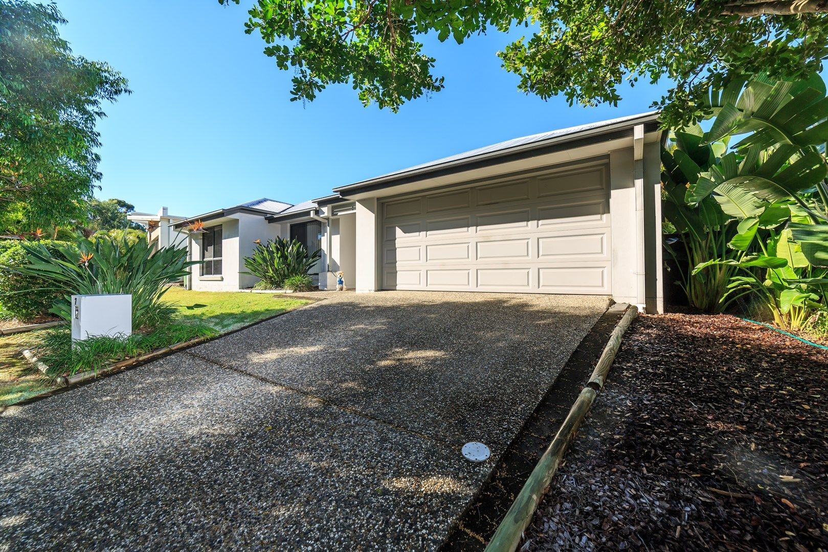 7 Napier Court, Pacific Pines QLD 4211, Image 0
