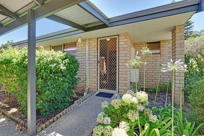 Picture of 16/201-205 Scarborough Beach Road, MOUNT HAWTHORN WA 6016