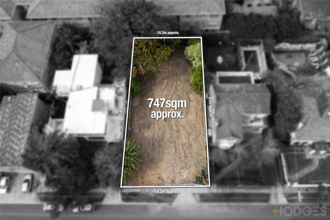 Picture of 14 Cantala Avenue, CAULFIELD NORTH VIC 3161