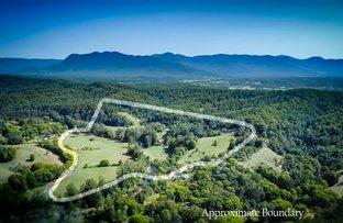184 Kalang Road, Bellingen NSW 2454