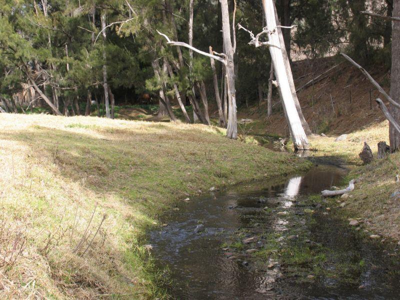 879 Duncans Creek Road, Woolomin NSW 2340, Image 2