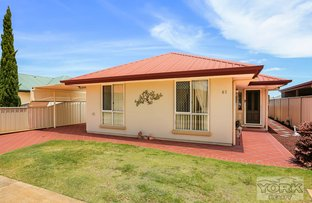 Picture of 60/303 Spring Street (Kingfisher Gardens Lifestyle Village), Kearneys Spring QLD 4350