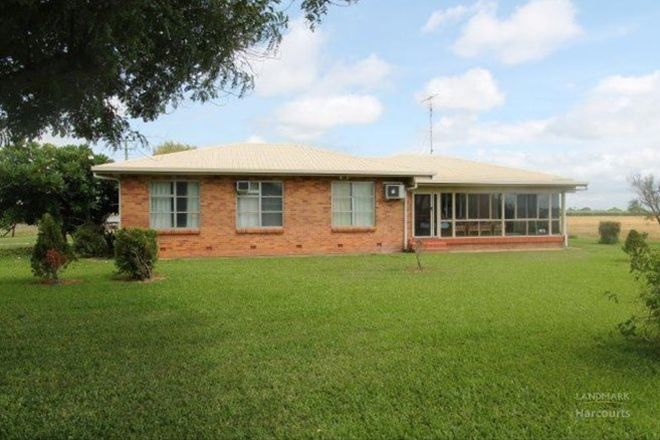Picture of 16 Ayr-Dalbeg Road, MCDESME QLD 4807