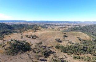 Picture of Little Plain, Bingara NSW 2404