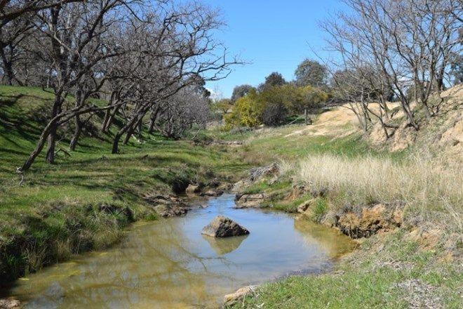Picture of Ceridale, BOAMBOLO NSW 2582