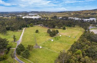 Picture of 139 Orchard Road, Kangy Angy NSW 2258