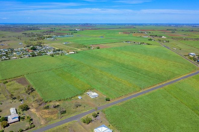 Picture of RUBYANNA QLD 4670