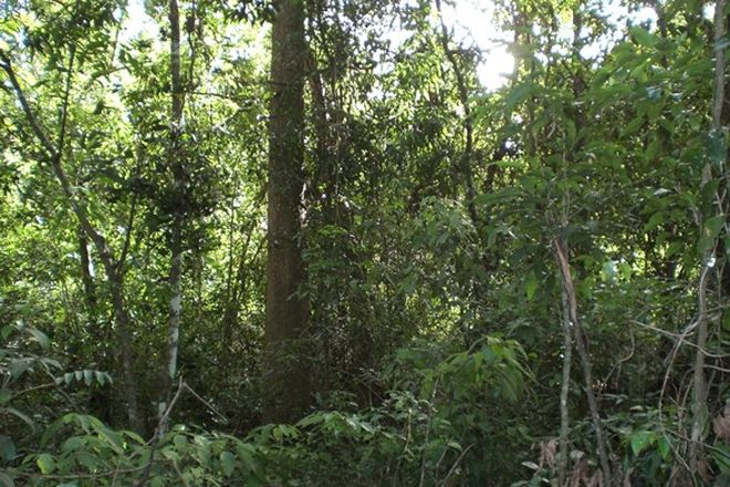 Picture of Lots 21, 28, 29 Dennis Road, MUNGAY CREEK NSW 2440