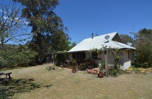 1455 Coxs Creek Road, Coxs Creek NSW 2849
