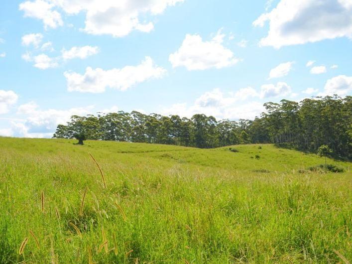 Lot 2 Willett Road, Bellthorpe QLD 4514, Image 1