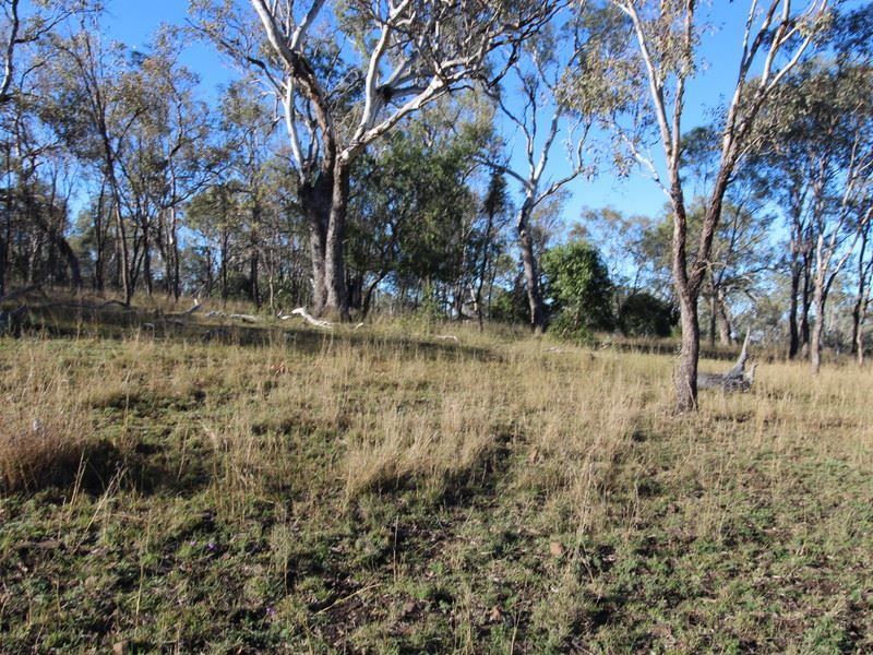 Lot 1, cnr Roeseller & Back Plains Road, Nobby QLD 4360, Image 2