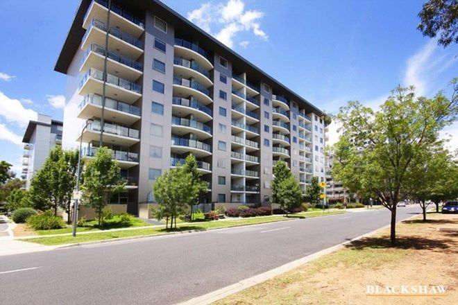 Picture of 3/77 Northbourne Avenue, TURNER ACT 2612