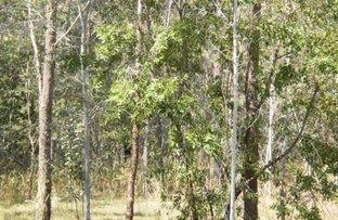 Picture of Kippenduff NSW 2469