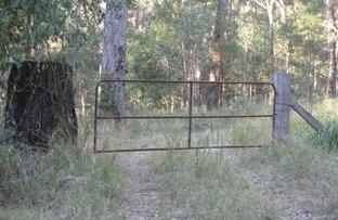 Picture of Lot 5 Mud Flat Road, Drake NSW 2469