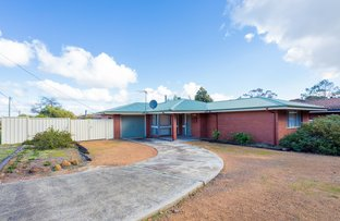 Picture of 49 Elouera Street, Collie WA 6225