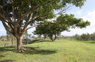 Picture of 14350 Bruce Highway, Gregory River QLD 4800