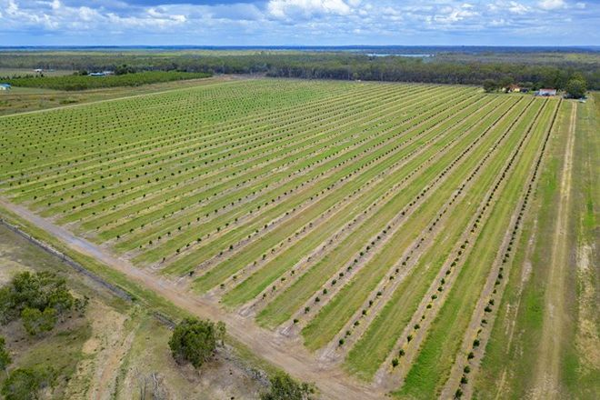 Picture of 742 Moorlands Road, MOORLAND QLD 4670