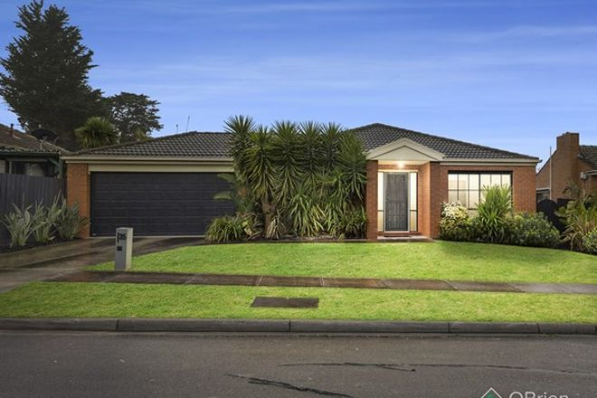 Picture of 35 Begonia Avenue, BAYSWATER VIC 3153
