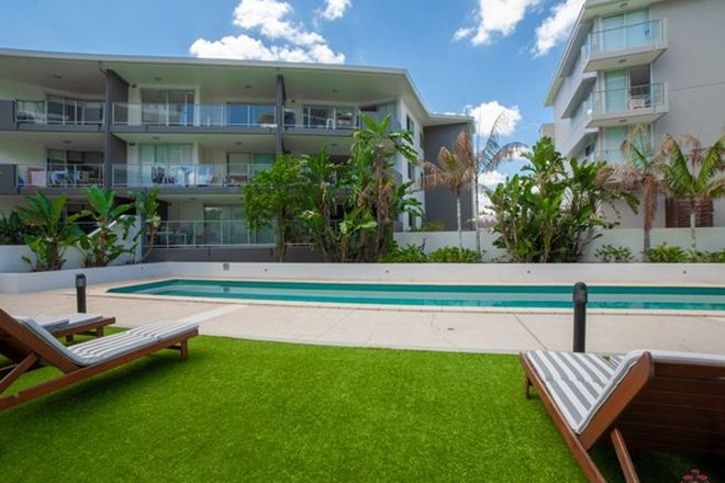 Picture of ID:3904167/95 Clarence Road, INDOOROOPILLY QLD 4068