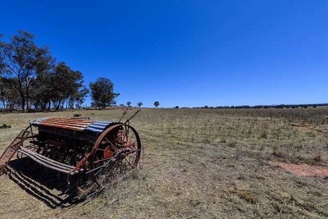 Picture of 2754 Henry Lawson Drive, GULGONG NSW 2852