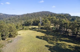 Picture of Lot 2/279 North Yarlington Road, Colebrook TAS 7027