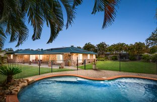Picture of 3 Pony Place, Cornubia QLD 4130
