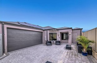 Picture of 75B Hinchinbrook Avenue, Ridgewood WA 6030