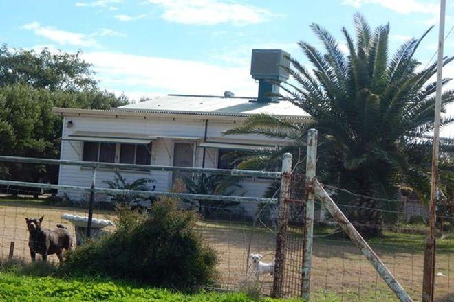 "Picture of ""Wongabeena"", BINIGUY NSW 2399"