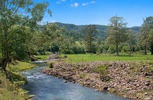 Picture of 2956 Nerang Murwillumbah Road, Natural Bridge QLD 4211
