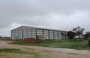 Picture of 1 23 Paskeville Road, Paskeville SA 5552