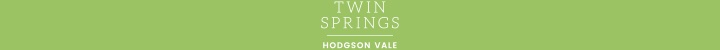 "Branding for ""Twin Springs"""
