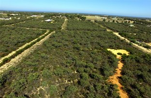Picture of Lot 20 Wren Way, Jurien Bay WA 6516