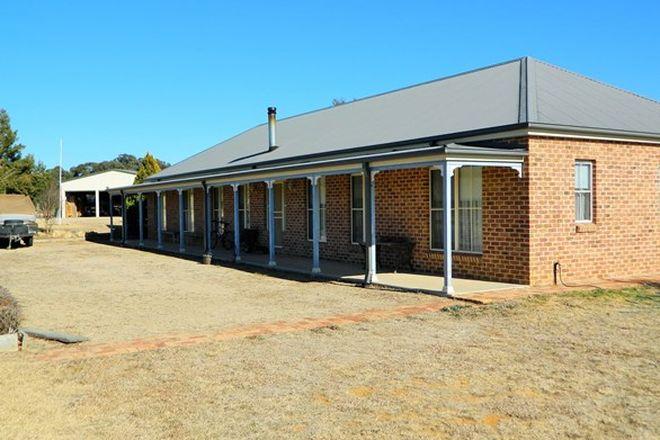 Picture of 44 Grevillea Gr, RYLSTONE NSW 2849