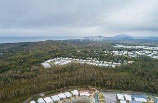 Picture of 21 Koel Circuit, Peregian Springs QLD 4573