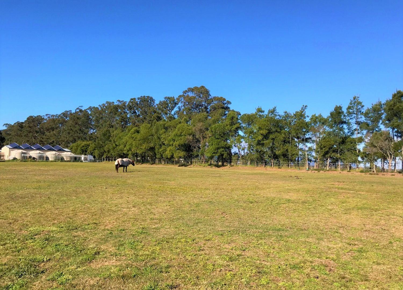 3A Moonlight Circuit, Gloucester NSW 2422, Image 2